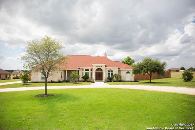 Single Family Home For Sale: 112 Abrego Mount Dr