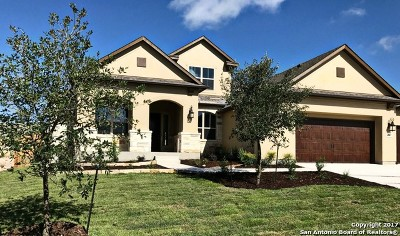 Bexar County Single Family Home For Sale: 2047 Buckner Pass