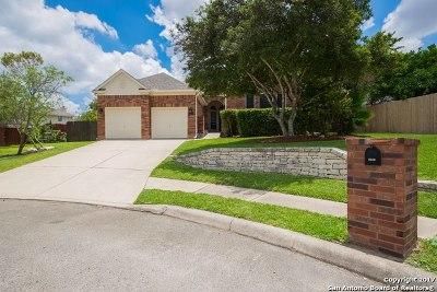 Single Family Home For Sale: 9106 Dapple Gray Ct