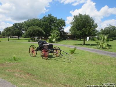 Bexar County Farm & Ranch For Sale: 21090 Fm 1303