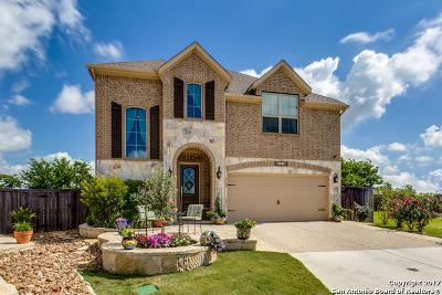 Saddlehorn Single Family Home For Sale: 126 Santa Anita Rd