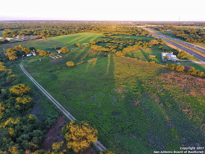 San Antonio Farm & Ranch For Sale: 14894 S Us Highway 181