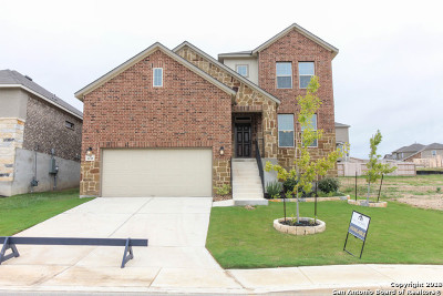 Bexar County Single Family Home For Sale: 6110 Rio Piedra Drive
