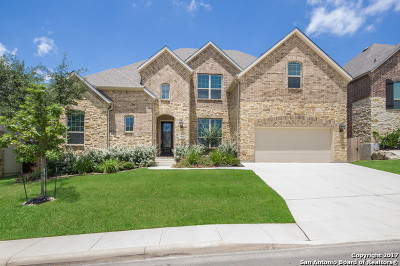 San Antonio Single Family Home For Sale: 25839 Scenic Rock