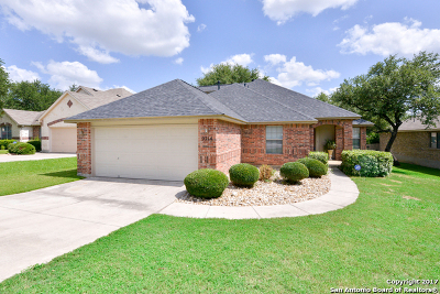 Helotes Single Family Home For Sale: 9214 Putnam Dr