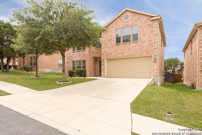 Single Family Home For Sale: 4515 Willow Tree