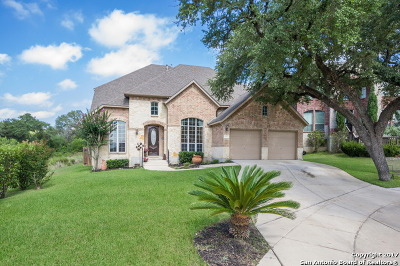 Helotes Single Family Home For Sale: 9110 Arroyo Hondo