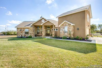 Single Family Home For Sale: 14806 Tamaron Pass