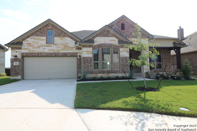 Cibolo Single Family Home For Sale: 716 Galway