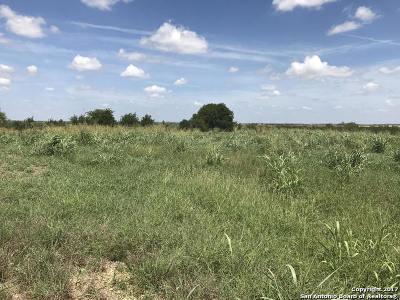 Bexar County Farm & Ranch For Sale: 645 Abbott Rd