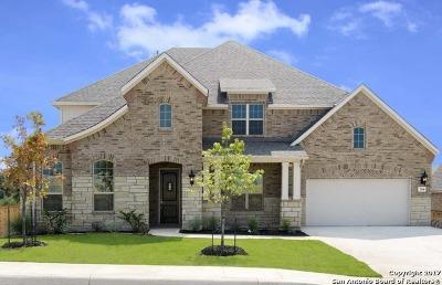 Single Family Home For Sale: 2046 Buckner Pass