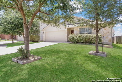 Cibolo Single Family Home For Sale: 313 Lasso Ln