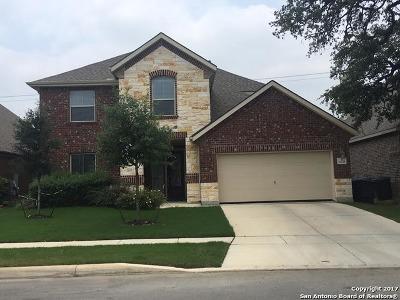 San Antonio Single Family Home Price Change: 20219 Ashford Vis