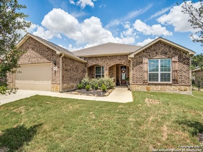Bexar County Single Family Home For Sale: 4213 Hillglen Way