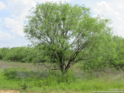 Guadalupe County Residential Lots & Land Back on Market: 507 Rawhide Rd