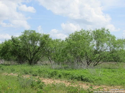 Guadalupe County Residential Lots & Land For Sale: 451 Rawhide Rd