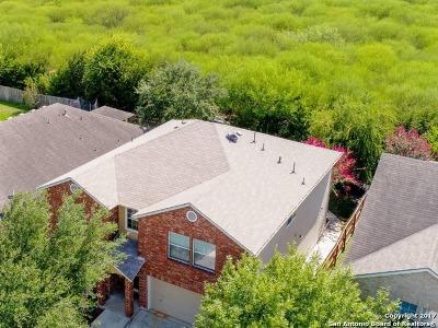 Schertz Single Family Home For Sale: 4202 Cherry Tree Dr