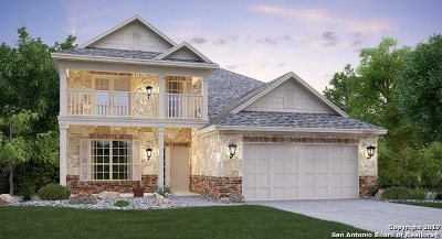 New Braunfels Single Family Home For Sale: 1917 Sunspur Rd