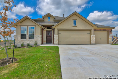 Single Family Home For Sale: 13610 Falls Summit