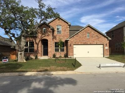Fair Oaks Ranch Single Family Home For Sale: 29012 Stevenson Gate