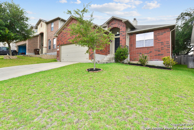 Bexar County Single Family Home For Sale: 807 Point Sunset