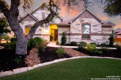 Boerne Single Family Home For Sale: 28923 Bearcat