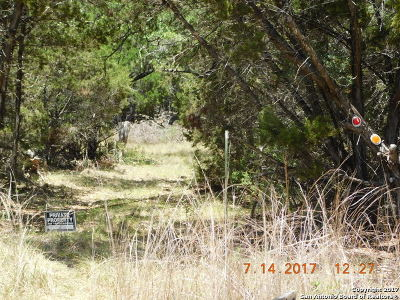 Bandera County Farm & Ranch For Sale: 162 Seco Pass Rd