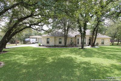 La Vernia Single Family Home For Sale: 3993 County Road 319
