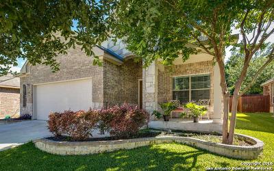 San Antonio Single Family Home For Sale: 13310 Palatine Hl