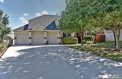 Helotes Single Family Home For Sale: 10536 Black Horse