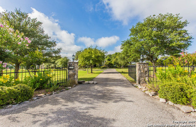 Boerne Single Family Home For Sale: 125 Spring Hill Dr