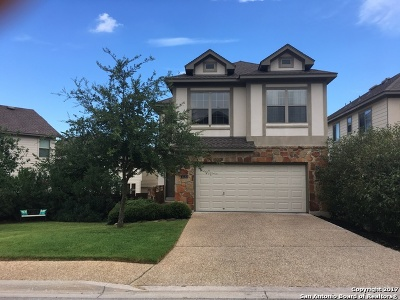 San Antonio Single Family Home For Sale: 1330 Tweed Willow
