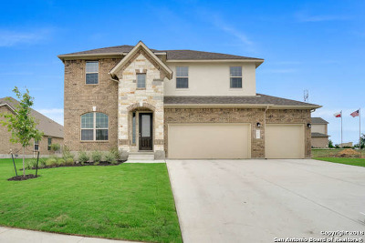 Cibolo Single Family Home For Sale: 841 Silver Fox
