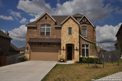San Antonio Single Family Home For Sale: 24519 Chianti Way