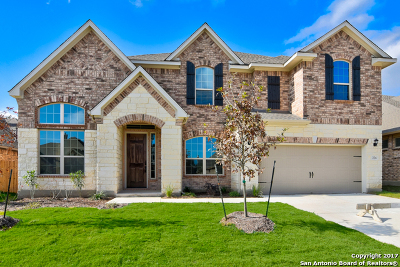 Woods Of Boerne Single Family Home For Sale: 226 Woods Of Boerne Blvd