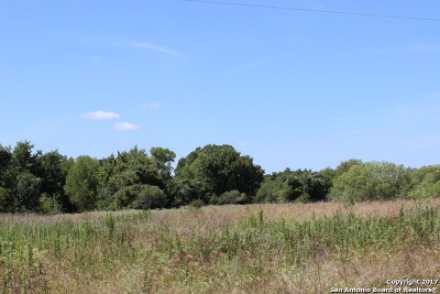 Guadalupe County Residential Lots & Land For Sale: 7300 Fm 466