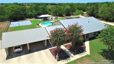 Guadalupe County Single Family Home For Sale: 2217 Rudeloff Rd