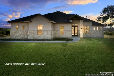 New Braunfels Single Family Home For Sale: 1230 Magnum