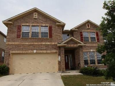 San Antonio Single Family Home For Sale: 24119 Buckthorn Pass