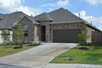 Boerne Single Family Home For Sale: 9852 Jon Boat Way