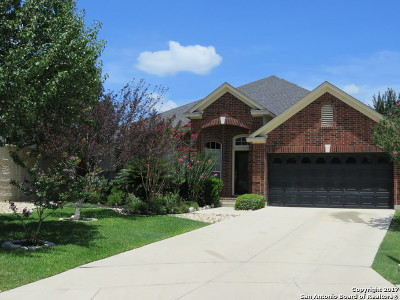 New Braunfels Single Family Home For Sale: 2632 Foresthaven Dr