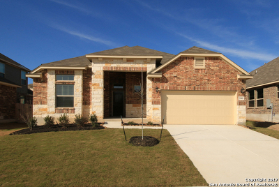 Guadalupe County Single Family Home For Sale: 2904 Mistywood Ln