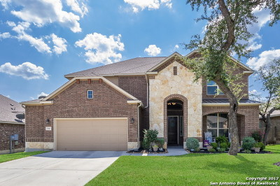 Boerne Single Family Home For Sale: 27047 Sable Run