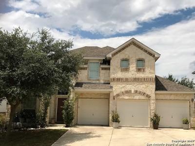 San Antonio Single Family Home For Sale: 3519 Mendocino Park