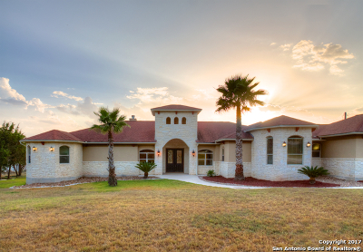 Bulverde Single Family Home For Sale: 318 Berry Oaks Dr