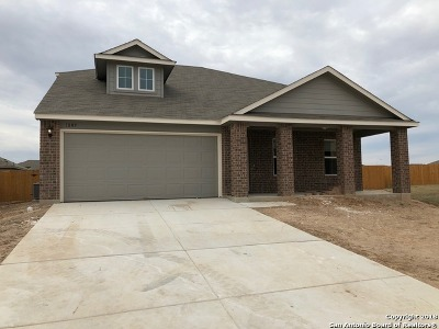 Guadalupe County Single Family Home For Sale: 1009 Sandwell Court