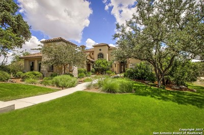 Boerne Single Family Home For Sale: 307 Augusta