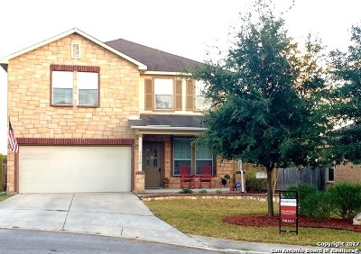 Boerne Single Family Home For Sale: 7410 Camino Manor