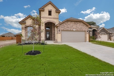 Stillwater Ranch Single Family Home For Sale: 8803 Study Butte