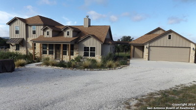 Pipe Creek Single Family Home For Sale: 425 Blevins Pass